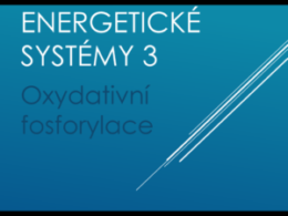 energetickesystemy3